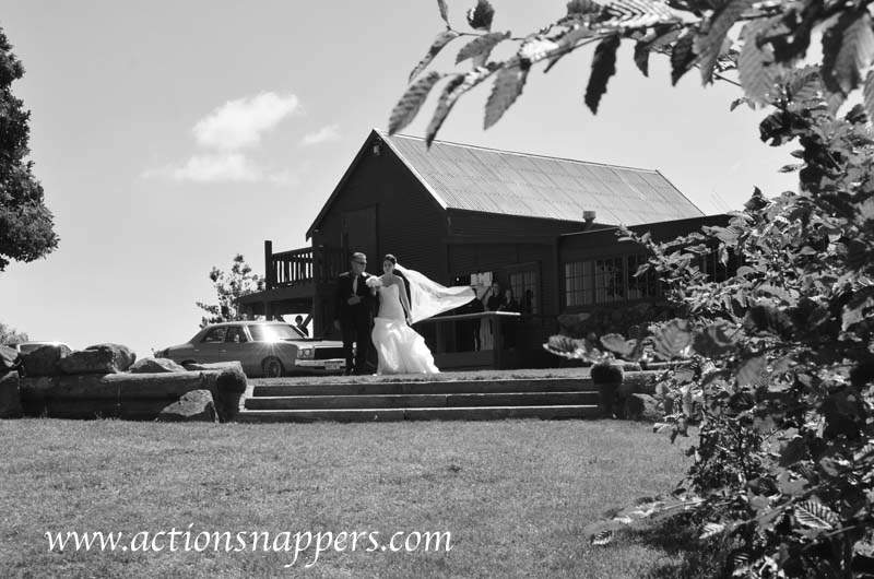 Wedding photo of bride walking down the aisle at Red Barn Tirau.