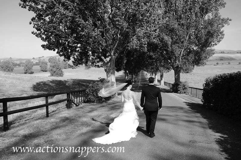 wedding photo of Bride and groom walking down tree lined road